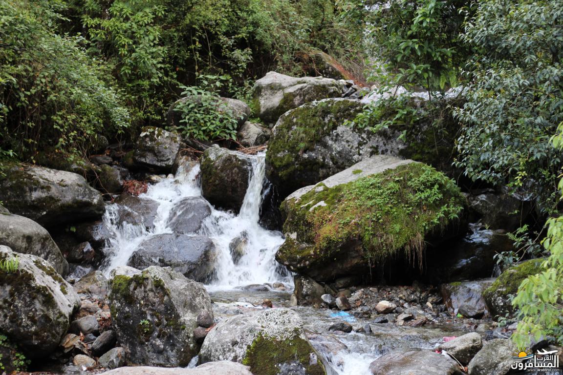 جولة فى دولة نيبال الرائعه 491957 المسافرون العرب