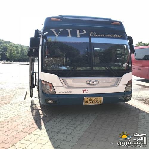 arabtrvl153608768853.jpg