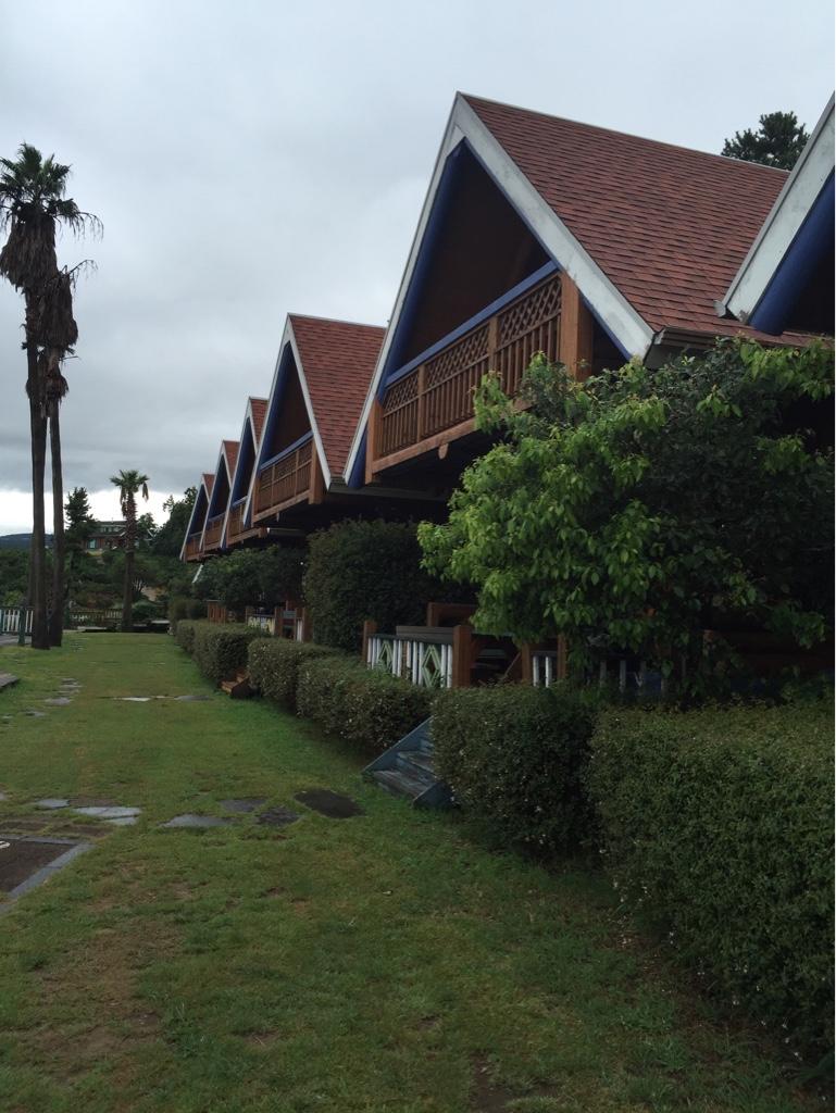 فندق جميل ومميزibis-493560