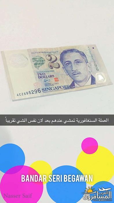 arabtrvl1482438037425.jpg
