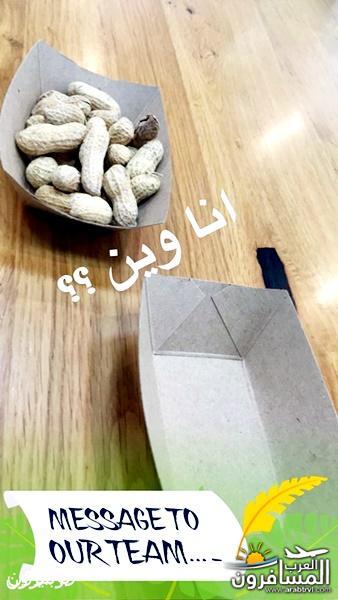 arabtrvl1475524184846.jpg
