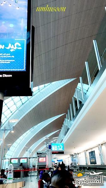 517091 المسافرون العرب مدينة غلاسكو الطبيعة والجمال