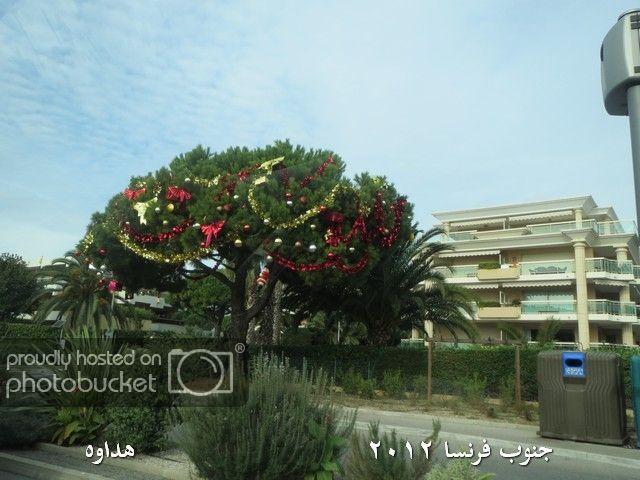 Image00016-1.jpg