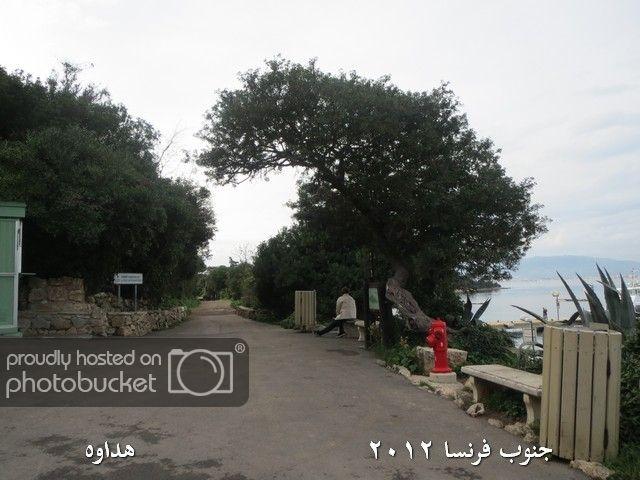 Image00092-1.jpg