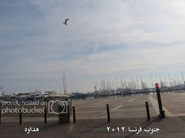 Image00035-1.jpg