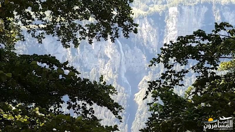 رحلة شيقة الى جبال الالب ونهر السي-540132