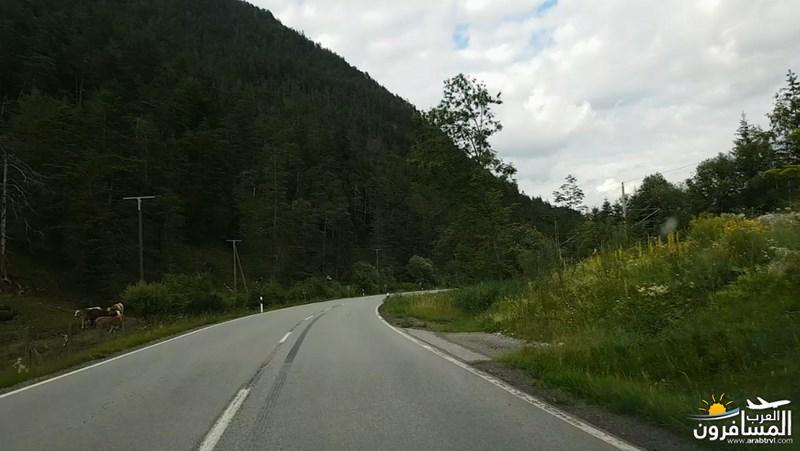 رحلة شيقة الى جبال الالب ونهر السي-540410