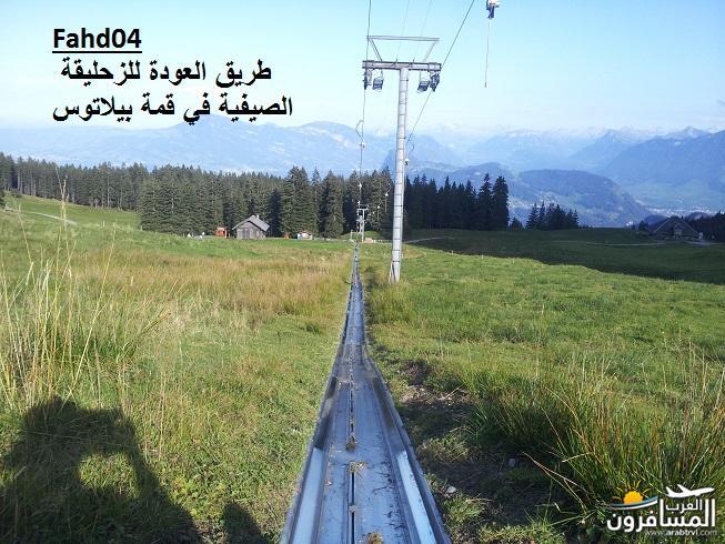 arabtrvl1438903262596.jpg