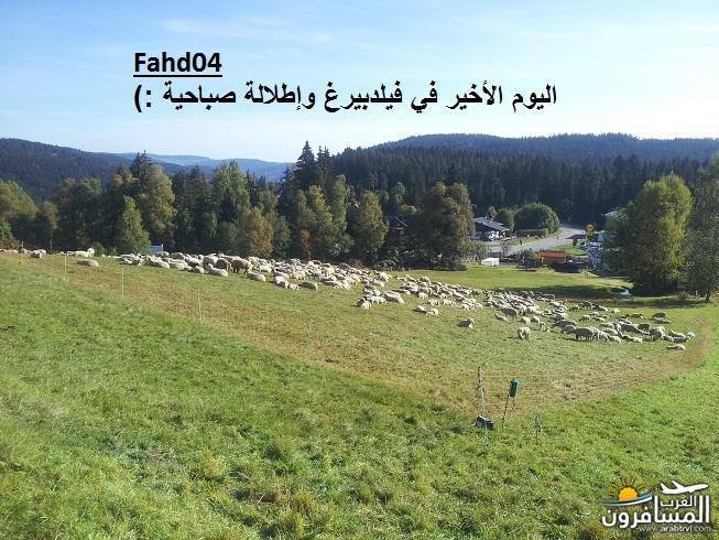 arabtrvl1438903106411.jpg