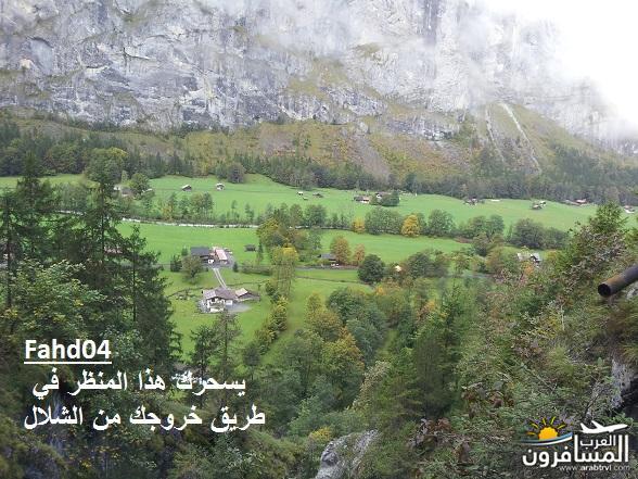 arabtrvl1438989056073.jpg