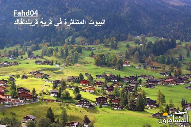 arabtrvl1438989201423.jpg