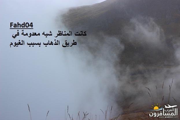 arabtrvl1438989596088.jpg