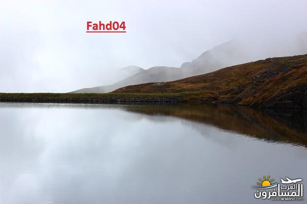 arabtrvl1438989887184.jpg