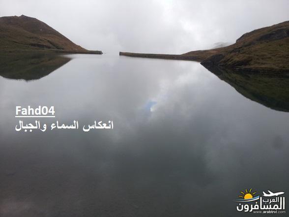 arabtrvl1438989769453.jpg