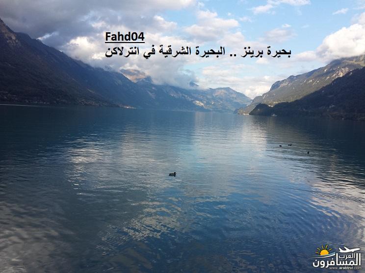 arabtrvl1438981373263.jpg