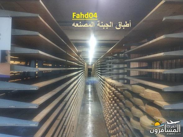 arabtrvl14390370367210.jpg