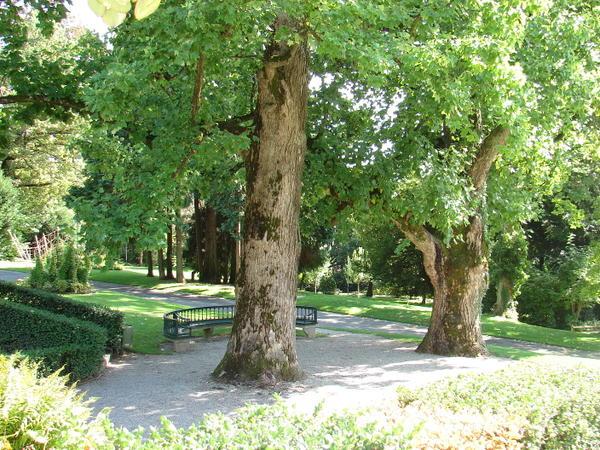 parc-Mon-Repos.jpg