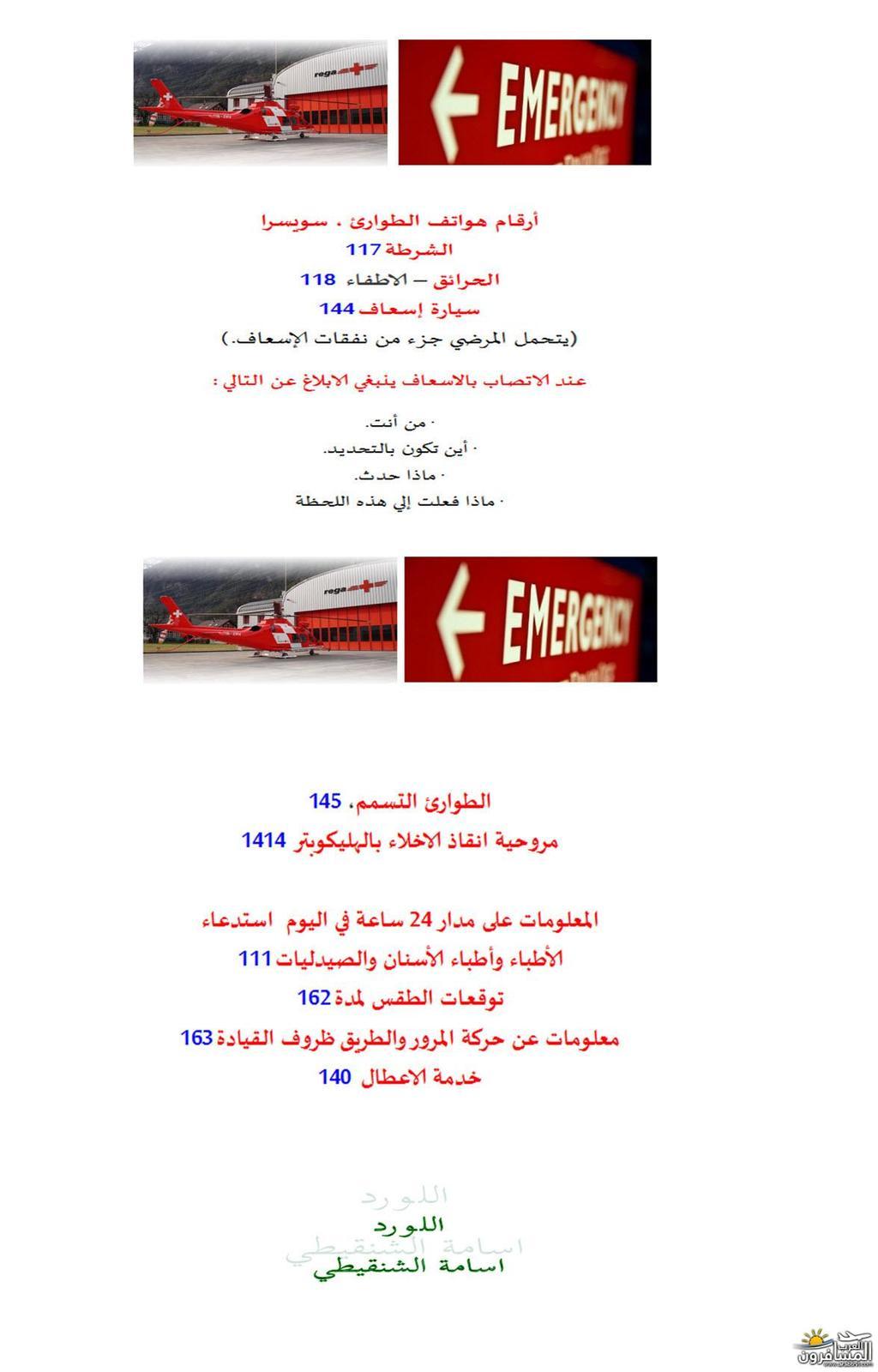 arabtrvl1433365443491.jpg