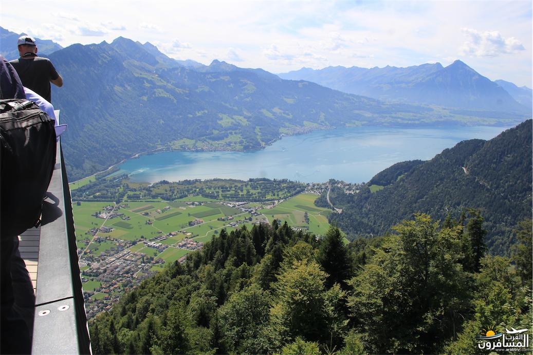 سويسرا بيوت ملوّنة و جداريات-543849