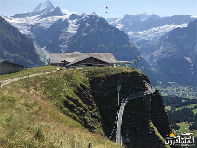 سويسرا بيوت ملوّنة و جداريات-543895