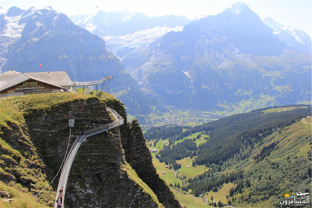 سويسرا بيوت ملوّنة و جداريات-543899