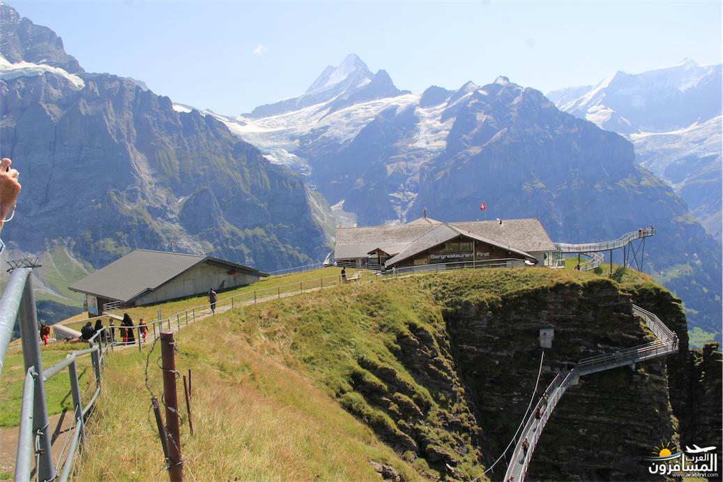 سويسرا بيوت ملوّنة و جداريات-543901