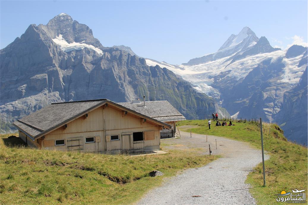 سويسرا بيوت ملوّنة و جداريات-543911