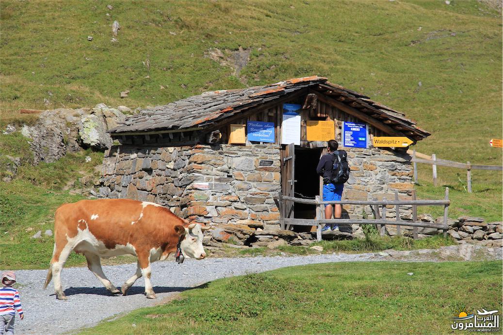 سويسرا بيوت ملوّنة و جداريات-543930