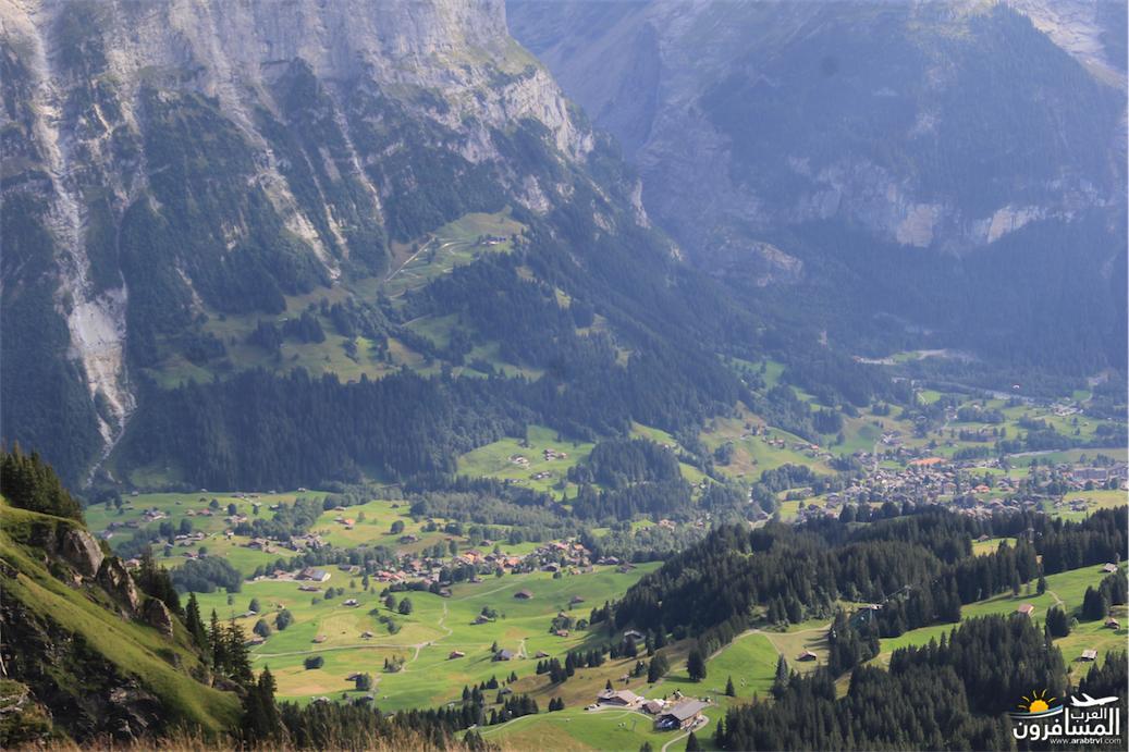 سويسرا بيوت ملوّنة و جداريات-543942