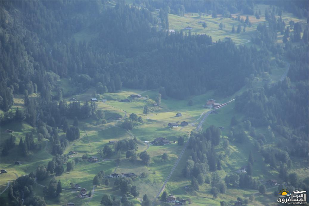 سويسرا بيوت ملوّنة و جداريات-543954