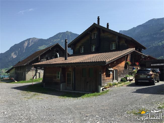 سويسرا بيوت ملوّنة و جداريات-543955