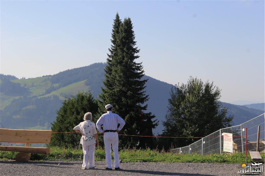 سويسرا بيوت ملوّنة و جداريات-544048