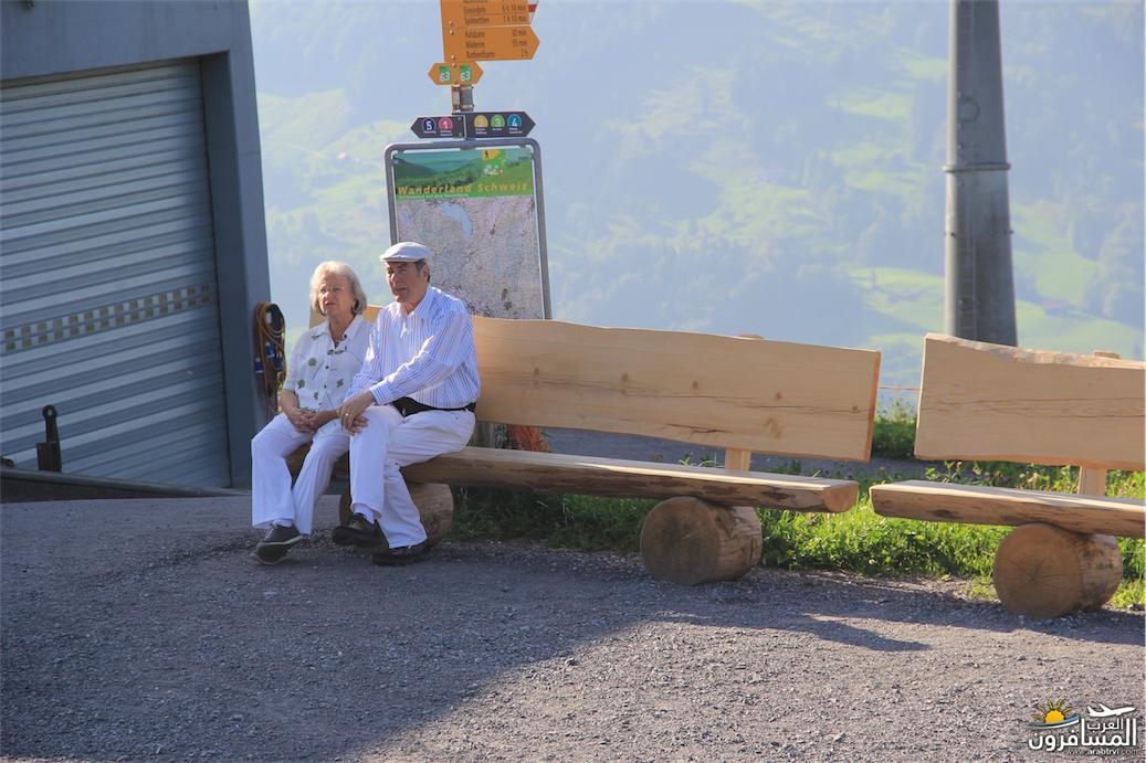 سويسرا بيوت ملوّنة و جداريات-544049