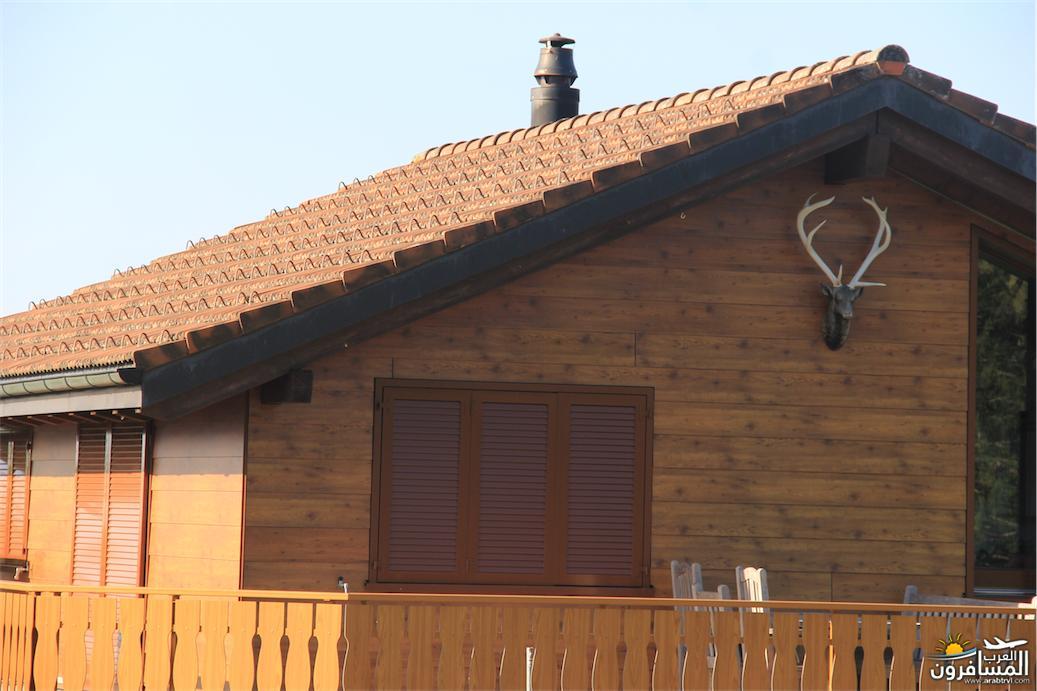سويسرا بيوت ملوّنة و جداريات-544050