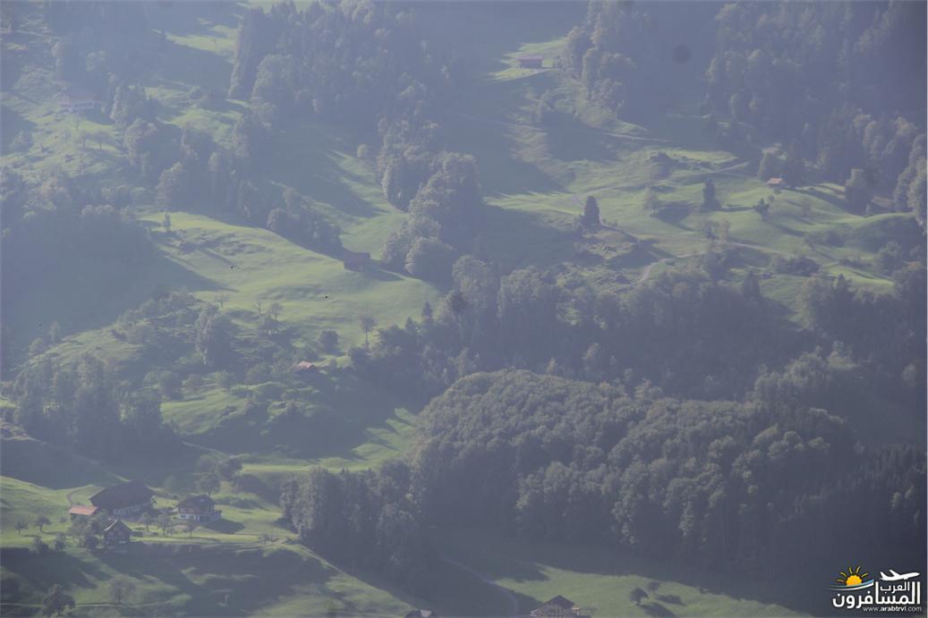 سويسرا بيوت ملوّنة و جداريات-544051