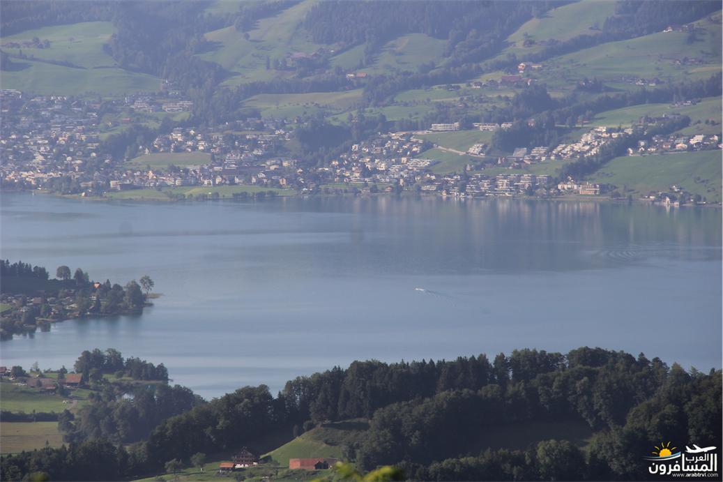 سويسرا بيوت ملوّنة و جداريات-544052
