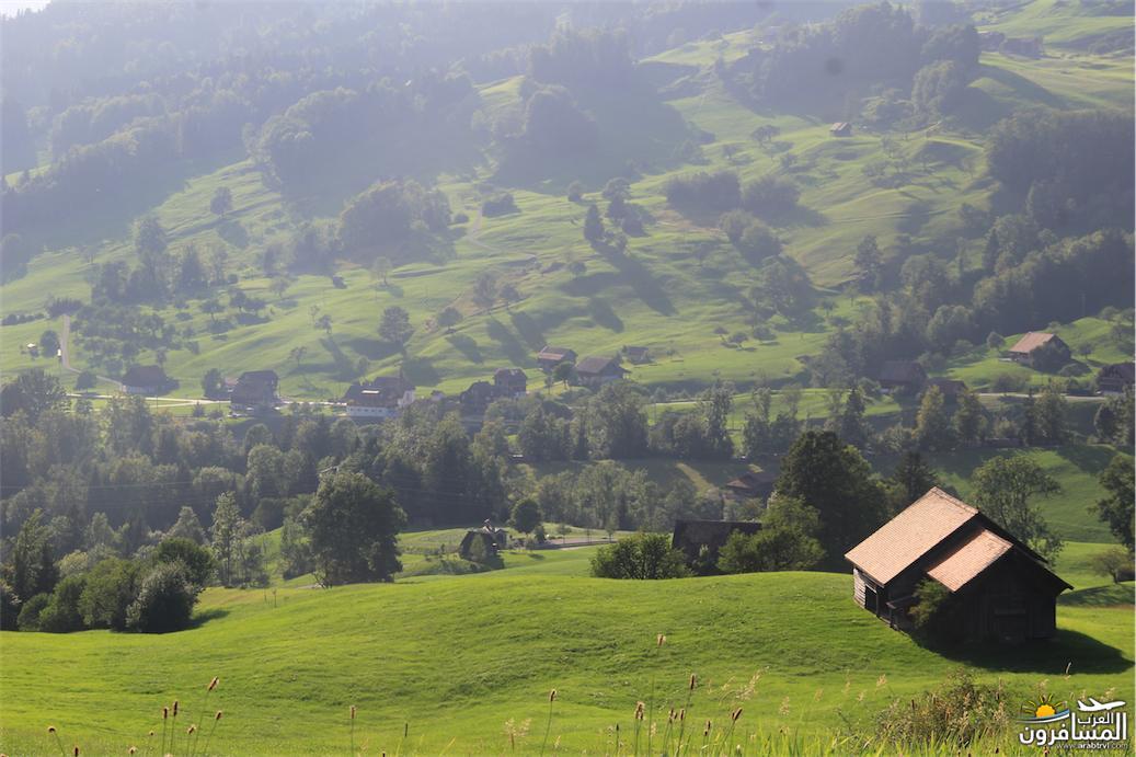 سويسرا بيوت ملوّنة و جداريات-544056