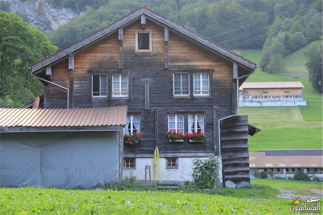 سويسرا بيوت ملوّنة و جداريات-544058