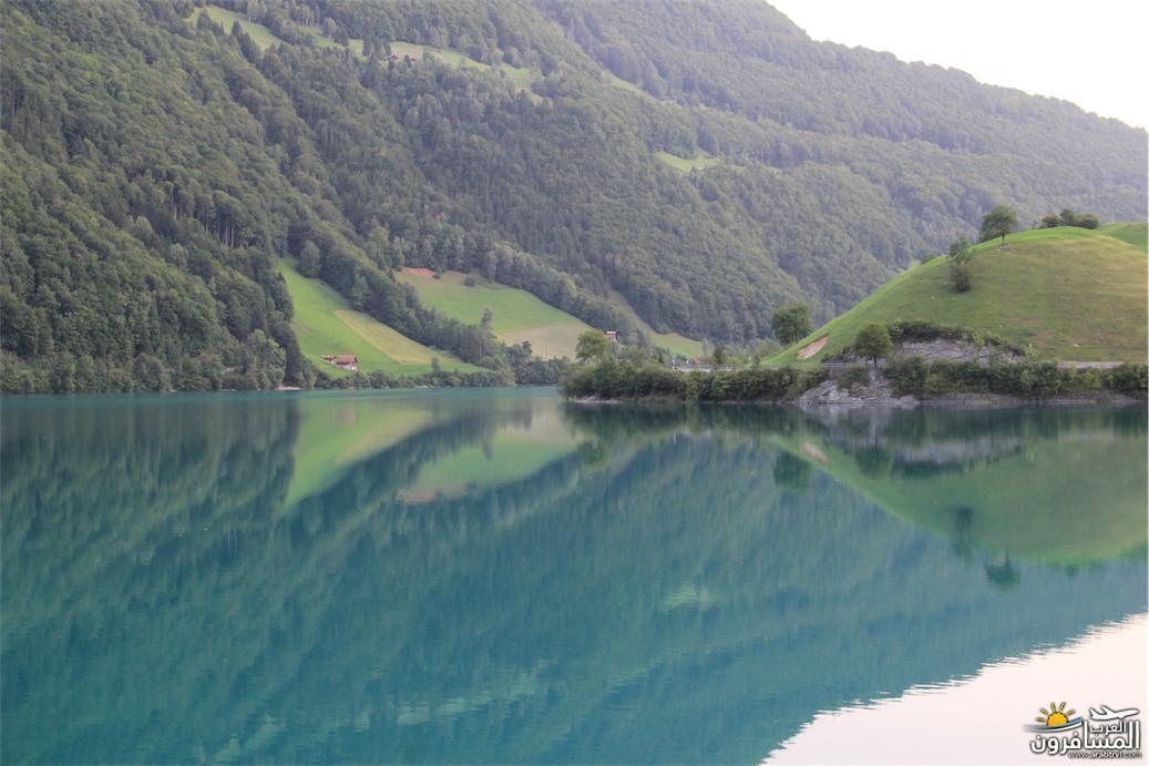 سويسرا بيوت ملوّنة و جداريات-544059