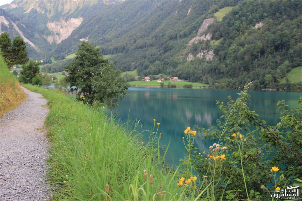 سويسرا بيوت ملوّنة و جداريات-544060