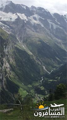 سويسرا بيوت ملوّنة و جداريات-544067