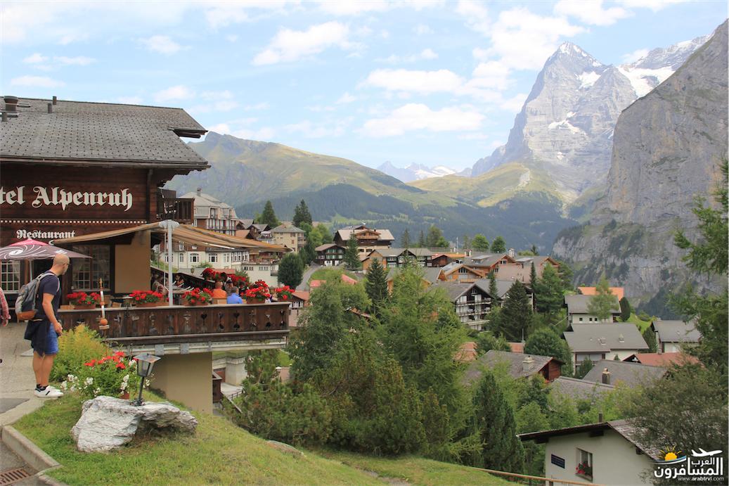 سويسرا بيوت ملوّنة و جداريات-544076