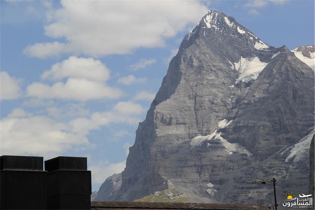 سويسرا بيوت ملوّنة و جداريات-544077