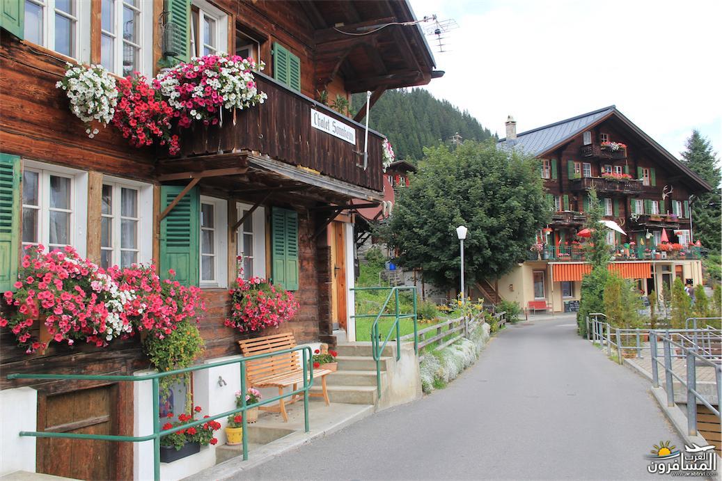 سويسرا بيوت ملوّنة و جداريات-544078