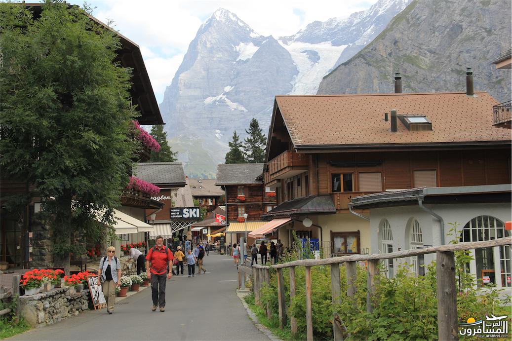 سويسرا بيوت ملوّنة و جداريات-544081