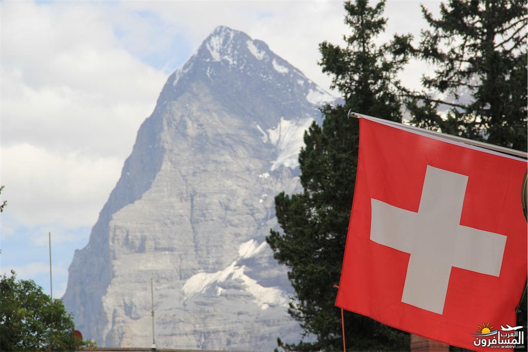 سويسرا بيوت ملوّنة و جداريات-544083