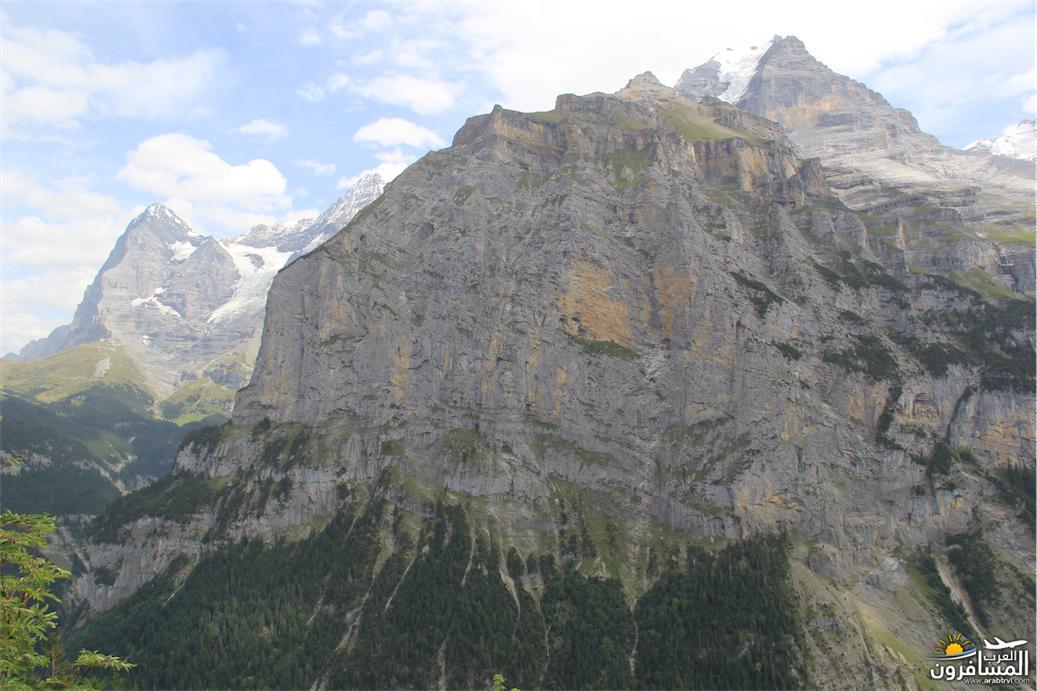 سويسرا بيوت ملوّنة و جداريات-544087