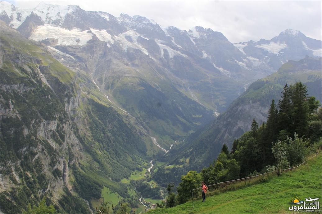 سويسرا بيوت ملوّنة و جداريات-544090