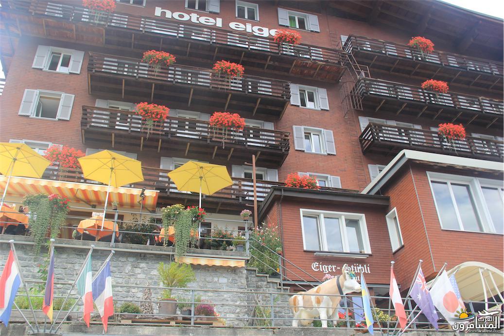 سويسرا بيوت ملوّنة و جداريات-544097