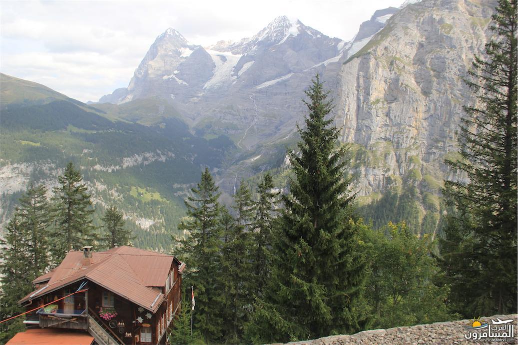 سويسرا بيوت ملوّنة و جداريات-544098